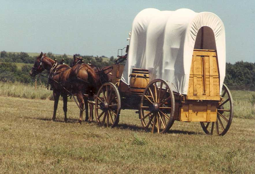 Chuckwagon For Sale The Wagon